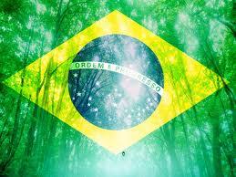 bandeira_floresta