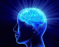 Feng Shui Lógico traz  renovação de sua mente. Aumenta sua percepção