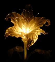 iluminação é fruto do uso de sua energia de forma a armazenar VIDA