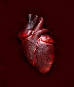 coração_pensante